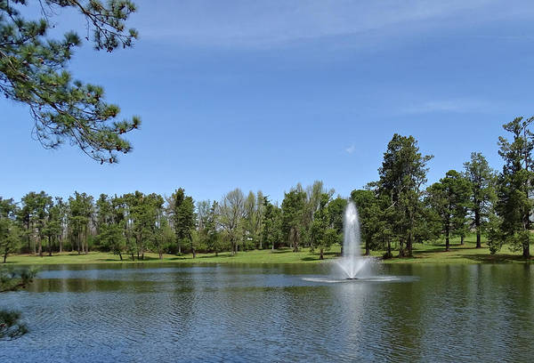 Photograph - Lake In Spring by Sandy Keeton