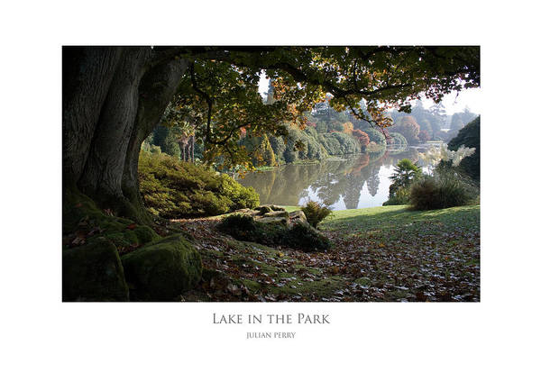 Lake In The Park Art Print