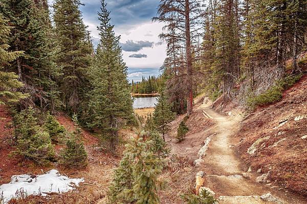 Photograph - Lake Irene by Susan Rissi Tregoning