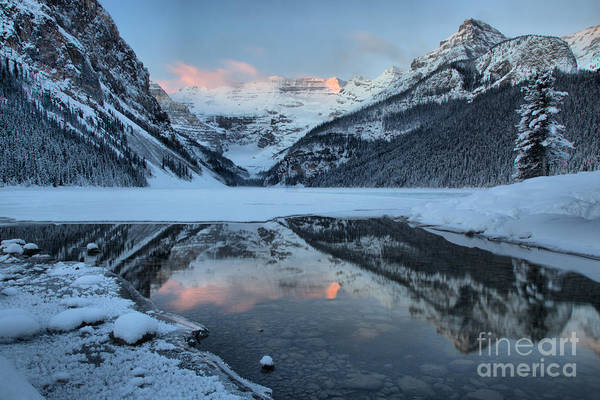 Photograph - Lake Louise Pink Morning by Adam Jewell