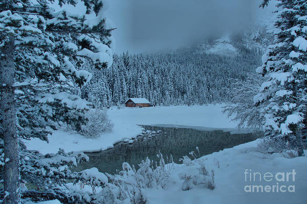 Photograph - Lake Louise Winter Landscape by Adam Jewell