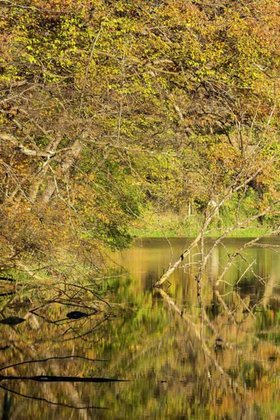 Wall Art - Photograph - Lake Maria Autumn 8 by John Brueske