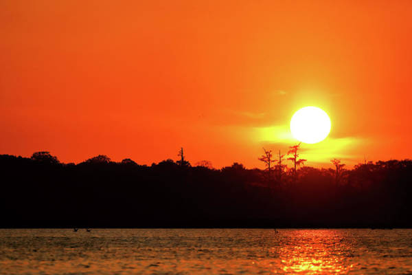 Photograph - Lake Martin Sunset by Nicholas Blackwell