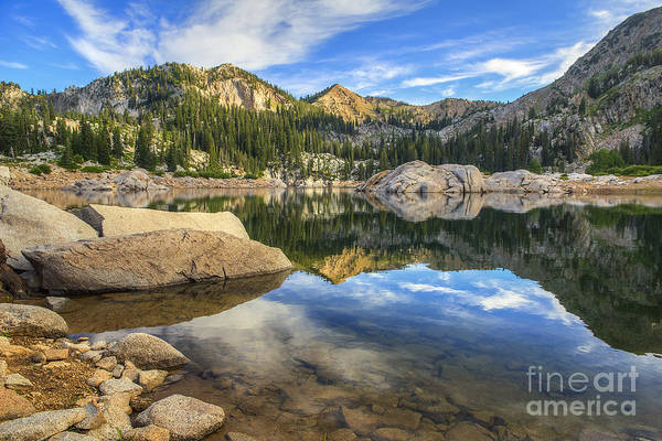 Photograph - Lake Mary by Spencer Baugh