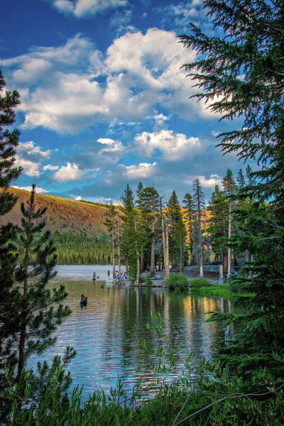 Photograph - Lake Mary Vertical  by Lynn Bauer