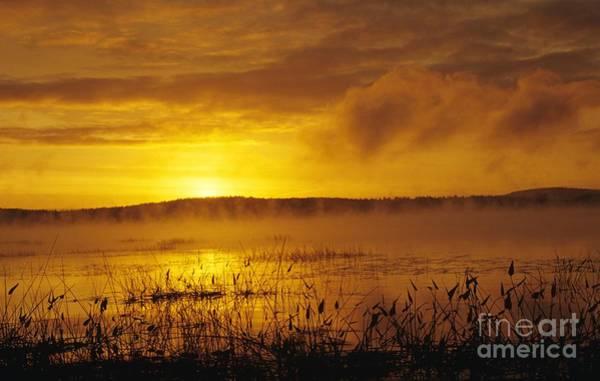 Photograph - Lake Massabesic - Auburn New Hampshire Usa by Erin Paul Donovan