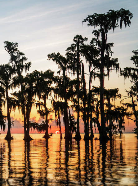 Photograph - Lake Maurepas Sunrise Triptych No 1 by Andy Crawford