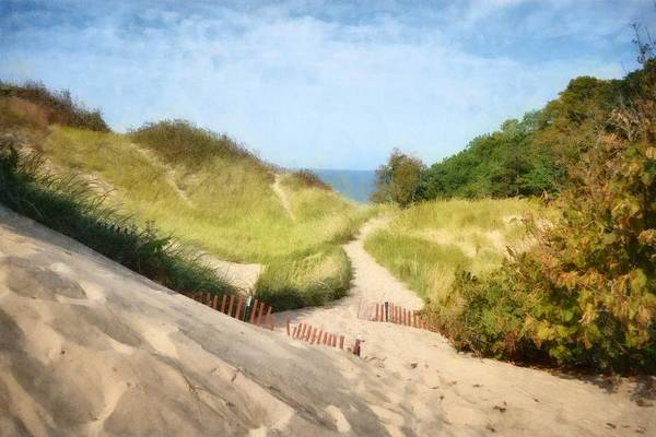 Photograph - lake Michigan Coastal Dune Path by Michelle Calkins