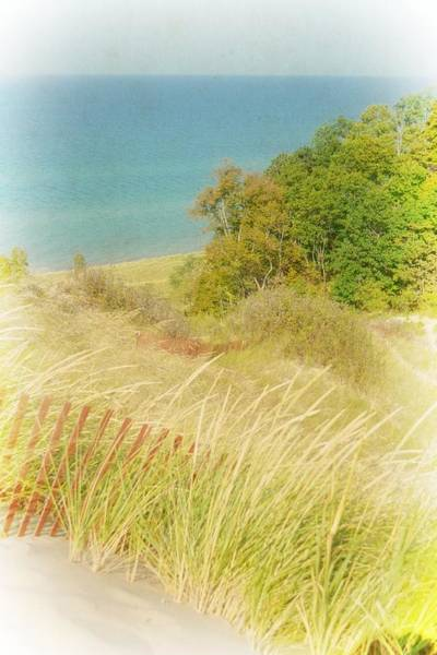 Photograph - Lake Michigan Dune View by Michelle Calkins