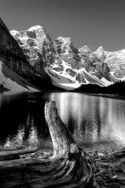 Photograph - Lake Moraine Drift Wood by David Matthews
