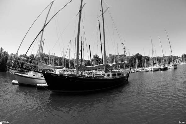 Wall Art - Photograph - Lake Murray S C Marina 2 Black And White by Lisa Wooten