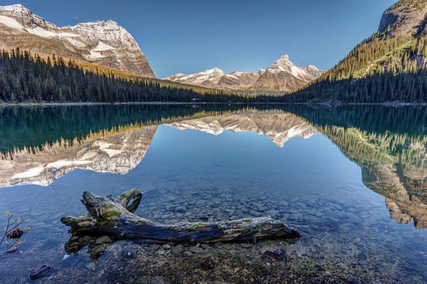 Photograph - Lake O'hara Reflection by Pierre Leclerc Photography