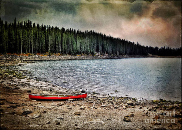 Grand Mesa Painting - Lake On The Grand Mesa Western Slope Colorado by Janice Pariza