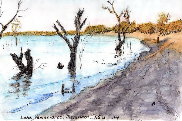 New South Wales Drawing - Lake Pamamaroo by Anne Huth