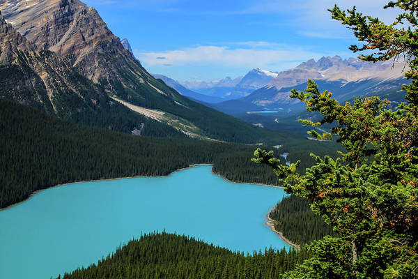 Photograph - Lake Peyto Banff National Park Alberta Canada by Ola Allen