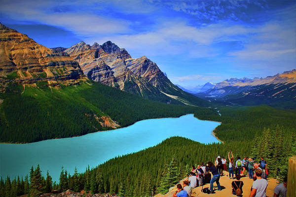 Photograph - Lake Peyto In Banff National Park by Ola Allen
