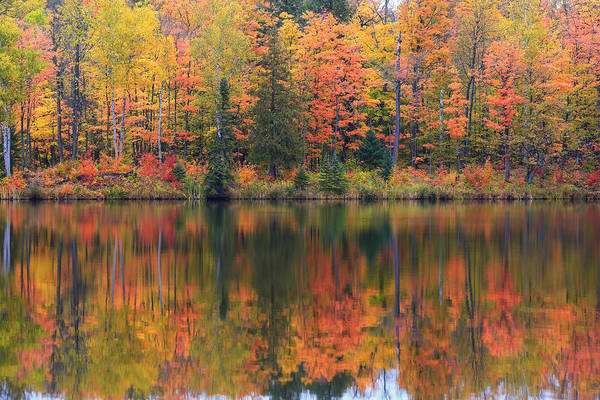 Photograph - Lake Plumbago Autumn by Rachel Cohen