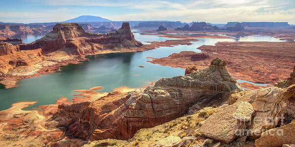 Photograph - Lake Powell From Alstrom Point by Spencer Baugh