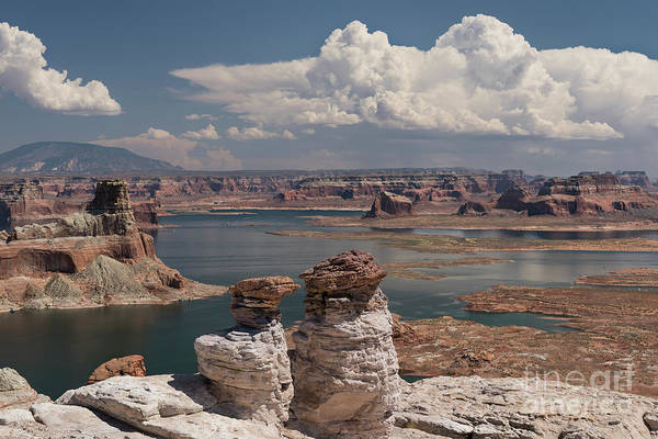 Wall Art - Photograph - Lake Powell Solitude by Sandra Bronstein