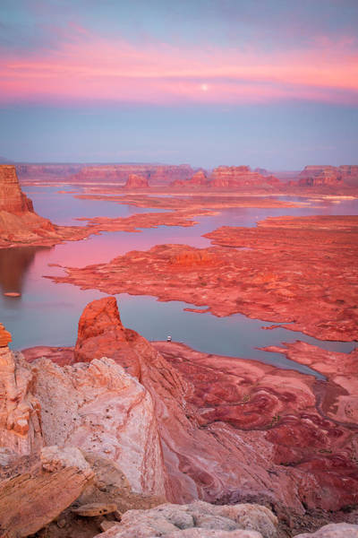 Photograph - Lake Powell Vertical Sunset by Johnny Adolphson