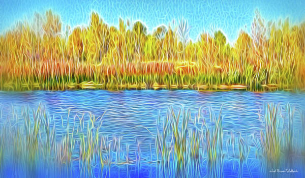 Digital Art - Lake Reeds In Stillness by Joel Bruce Wallach