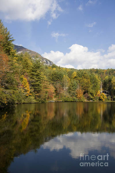 Photograph - Lake Reflections Portrait by Jill Lang