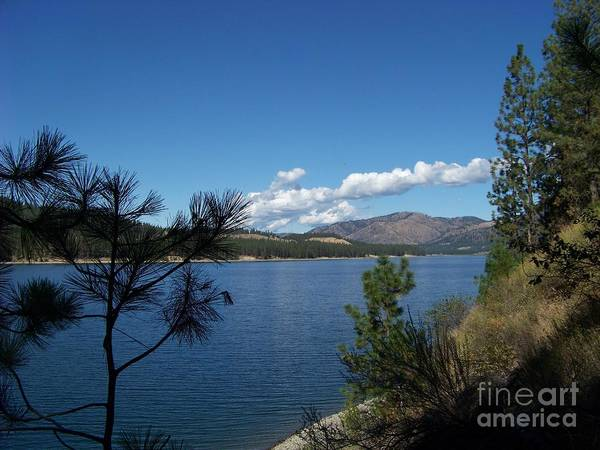 Photograph - Lake Roosevelt by Charles Robinson