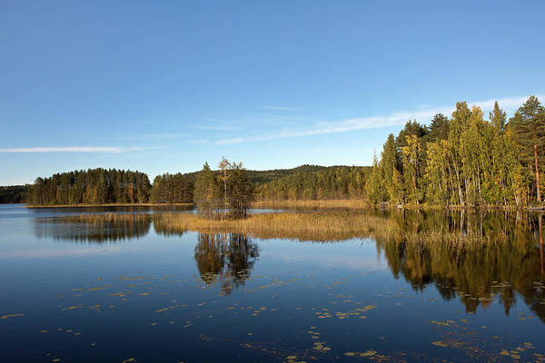 Photograph - Lake Savi by Aivar Mikko