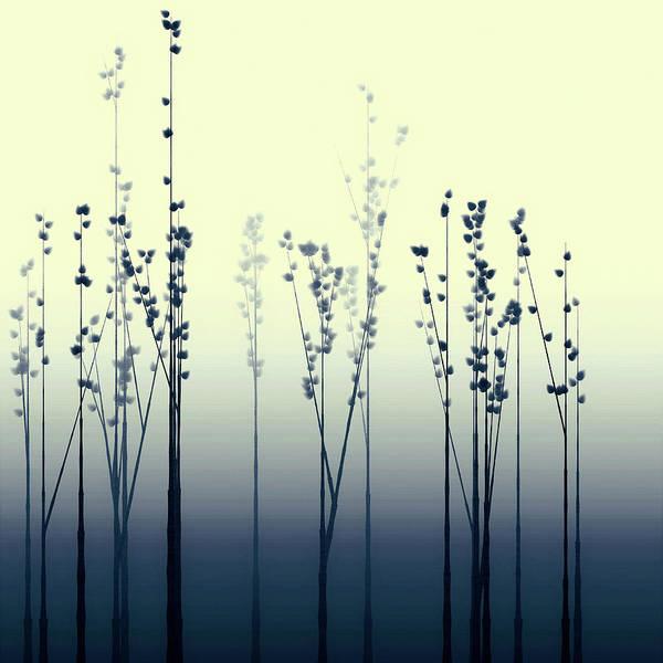 Digital Art - Lake Shoji Spring by Susan Maxwell Schmidt