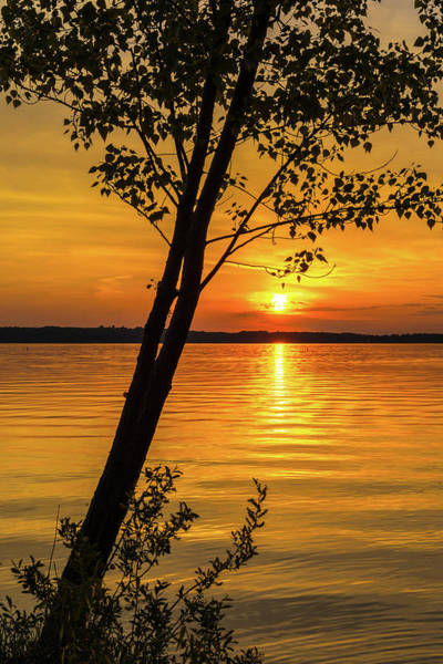 Photograph - Lake Sunset by Dan Sproul
