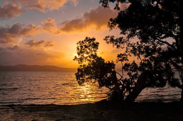 Photograph - Lake Sunset by Nicholas Blackwell