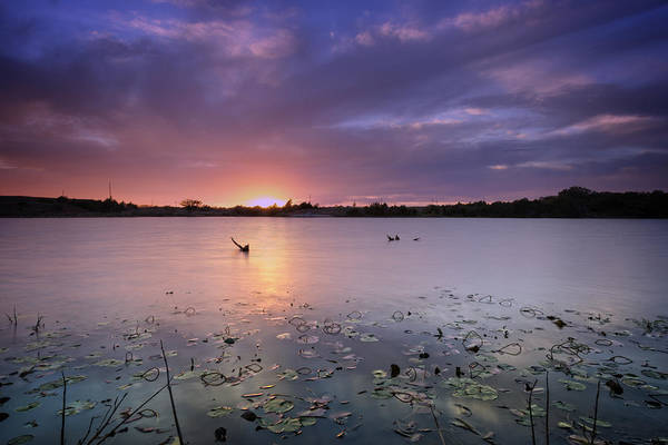 Wall Art - Photograph - Lake Sunset Xix by Ricky Barnard