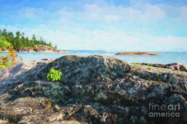 Digital Art - Lake Superior North Shore Rocks by Les Palenik