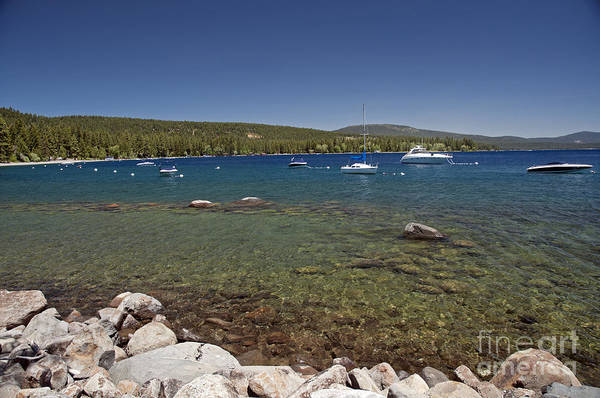 Photograph - Lake Tahoe by Cindy Murphy - NightVisions