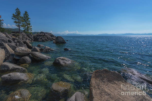 Photograph - Lake Tahoe  by Michael Ver Sprill