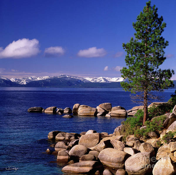 Wall Art - Photograph - Lake Tahoe Shore One by Vance Fox