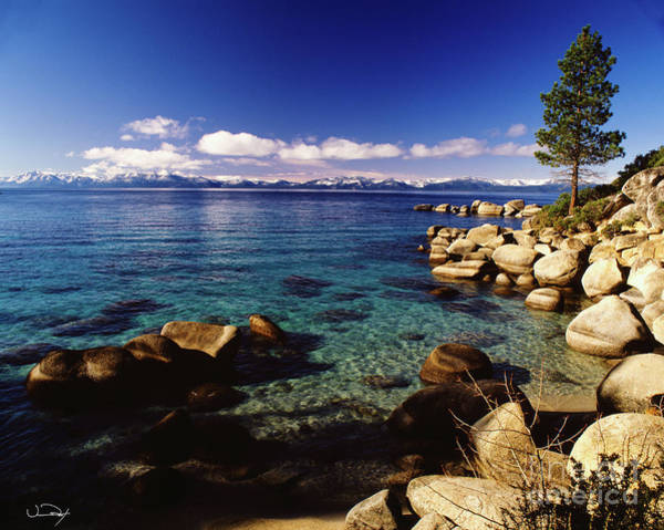 Wall Art - Photograph - Lake Tahoe Shore Two by Vance Fox