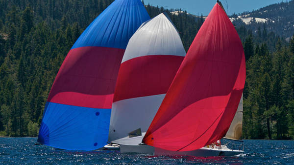 Photograph - Tahoe Spinnakers by Steven Lapkin