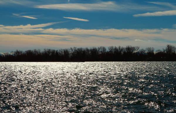 Wall Art - Photograph - Lake Trees Sky by Valentino Visentini