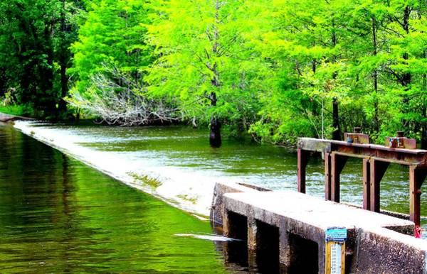 Photograph - Lake Waccamaw Dam by Cynthia Guinn