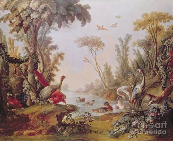 Francois Boucher Painting - Lake With Geese Storks Parrots And Herons by Francois Boucher