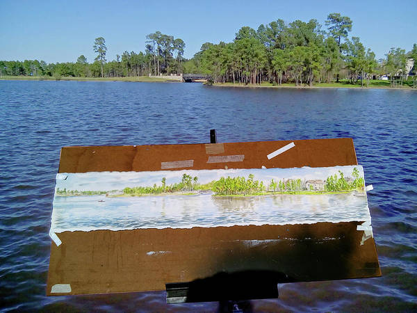Painting - Lake Woodland Panoromic View-spring by TD Wilson