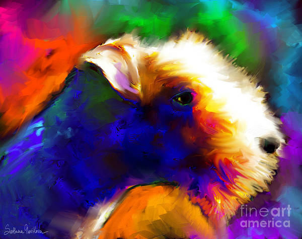 Wall Art - Painting - Lakeland Terrier Dog Painting Print by Svetlana Novikova