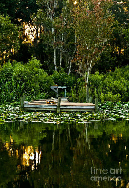 Photograph - Lakeside 1 by Kathi Shotwell