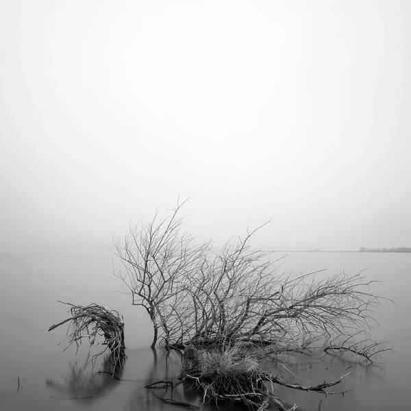 Wall Art - Photograph - Lakeside 2 by Catherine Lau