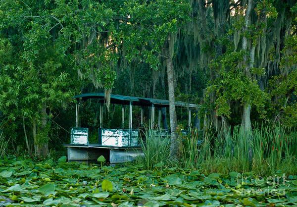 Photograph - Lakeside 2 by Kathi Shotwell