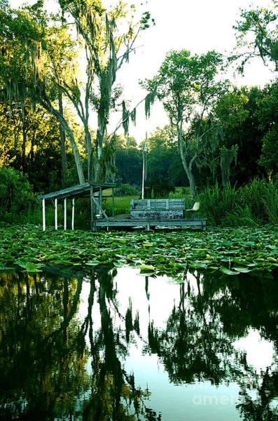 Photograph - Lakeside 3 by Kathi Shotwell