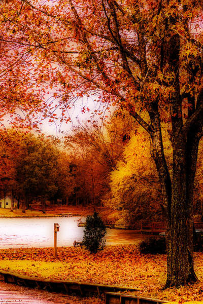 Photograph - Lakeside Autumn by Barry Jones