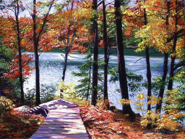 Painting - Lakeside Boardwalk by David Lloyd Glover