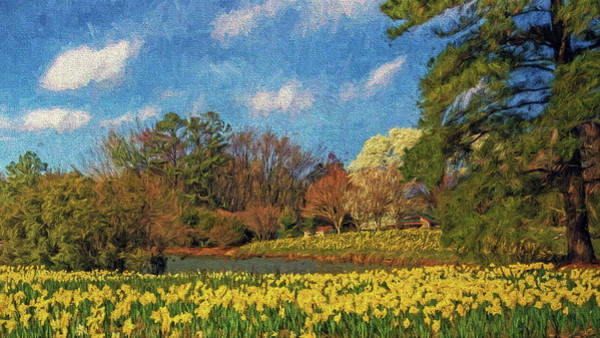 Photograph - Lakeside Daffodils by Jerry Gammon